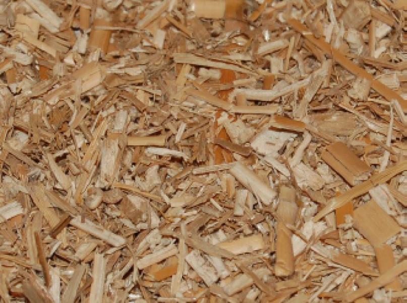 Photo 1 Les paillettes de Miscanthus sont à utiliser comme paillage annuel pour plantes vivaces, annuelles et potagères. - DUMONA