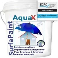 Bizidil NanoSources-Peinture aqueuse Int/Ext Hydrofuge Réfléchissante!
